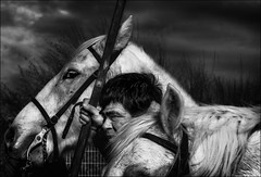 Le trio (vedebe) Tags: chevaux animaux homme humain human people portraits portrait camargue gardians noiretblanc netb nb bw monochrome abrivado