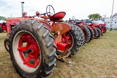 The Line-up (gabi-h) Tags: tractors antique vintage antiquetractorshow pictonfallfair gabih princeedwardcounty farmmachinery farmequipment rural farmers red wheels bigwheels grass fairgrounds