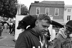 Just Ferreting Around (Bury Gardener) Tags: burystedmunds bw blackandwhite england eastanglia uk suffolk streetphotography street streetcandids snaps strangers candid candids people peoplewatching nikond7200 nikon monochrome mono 2018 cornhill