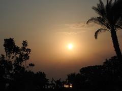 September sunrise over the Red Sea (azalicja) Tags: redsea sunrise sun sky landscape egypt safaga beach sea water tree
