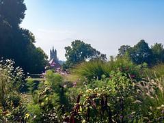 Lausanne (jeanmichelchuiche) Tags: lausanne suisse cantondevaud ch cathédrale fleurs switzerland alpes savoie plantation massifdefleurs couleurs color prairie vue romandie arbres verdure paysage urbain ville espacevert clocher tour toit toits