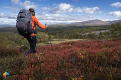 Taking in that view (HendrikMorkel) Tags: sweden vålådalen åre gregoryoptic48 lightweightbackpack backpacking backpack gregory optic48backpack