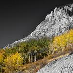 Waning Gibbous Moon Autumn Monarch Pass BWSC thumbnail