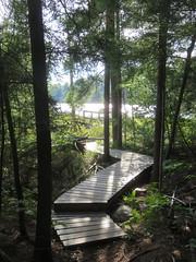 Lake of the Woods Trail 3 (D. S. Hałas) Tags: halas hałas canada ontario sudburydistrict manitoulindistrict carlyletownship killarney killarneylakelandsandheadwatersprovincialpark lakeofthewoodstrail lakeofthewoods
