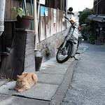 Onomichi thumbnail