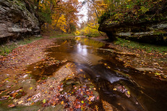 Fall Creek Gorge (jrobfoto.com) Tags: 500px a7rii alpha autumn canyon fallcreekgorge fauna flora fullframe in indiana landscape moss outdoor pothole raw sony tumblr twitter water waterfall williamsport unitedstates us