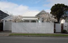 20180923_5275_7D2-26 The New Zealand Villa (johnstewartnz) Tags: villa madrasstreet building house canon canonapsc apsc eos 7d2 7dmarkii 7d canon7dmarkii canoneos7dmkii canoneos7dmarkii 2470 2470mm ef2470mmf4l canonef2470f40l christchurch 100canon