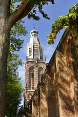 (Don Bello Photography) Tags: sommer 2018 holland niederlande enkhuizen zuiderkerk acdsee panasonicfz1000 lumixfz1000 reinhardbellmann donbellophotography