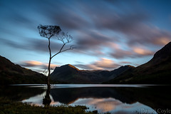The Lone Tree, Buttermere (Daniel Coyle) Tags: thelonetreebuttermere thelonetree lonetree buttermere tree mountains lake lakedistrict hills fells water longexposure reflections clouds danielcoyle nikon nikond7100 d7100 uk england cumbria scenic nationaltrust nature natural view countryside outdoor haystacks