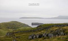 Faroe_Islands_2014_XXXV (LyonelPerabo) Tags: faroe faroes island islands föröyar scandinavia arctic atlantic faroese kingdom danmark denmark white sky skies outside landscape cloud clouds cloudy torshavn tórsfavn green grass sea ocean