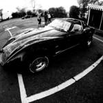 Corvette Summer thumbnail