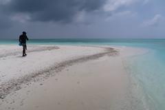 A sandbank on South Male Atoll, The Maldives (omnia2070) Tags: the maldives south male atoll sandbank sand bank water ocean sea indian cloud man walk