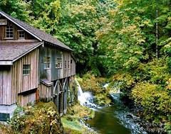 Cedar Creek Grist Mill, 8x10 Color (Gary L. Quay) Tags: cedarcreekgristmill washington woodland mill grain flour pacificnorthwest 8x10 film color