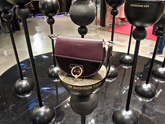 1,240 Euro Bag (William Young Fascinations) Tags: paris france lafayettegalleries shops stores handbag jwanderson luxury expensive