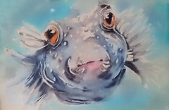 Day 17. Pufferfish a moment before.. (sushipulla) Tags: inktober2018 inktober swollen pufferfish blowfish seascape sealife inked ink blackink inkwash