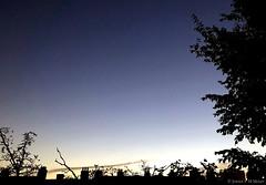 07:32 18.10.18 (jpmm) Tags: 2018 amsterdam sunrise zuid wolken clouds stratus cumulus