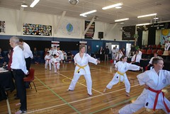 DSC00253 (retro5562) Tags: martialartssport karatemartialart karatekata kata kumite karatekumite teamsport gkr r21 hubtournament karate martialarts 2018 wgtn wellington waterlooschool waterloo lowerhutt newzealand ring1 ring2 male female