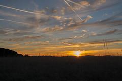 _DSC9532.jpg (thomasresch) Tags: sonneaufgang sun nordhaide panzerwiese nebel hartelholz sunrise sonne