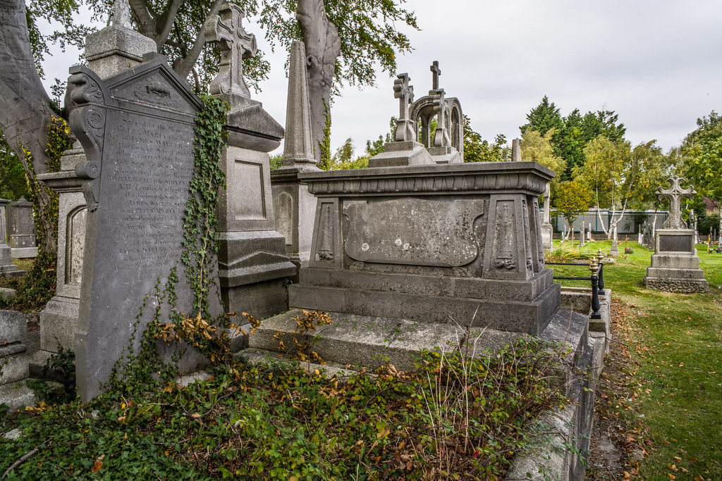 SEPTEMBER 2018 VISIT TO GLASNEVIN CEMETERY [ I USED A BATIS 25mm LENS AND I EXPERIMENTED WITH CAPTURE ONE]-144802