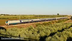 "E402 158 Golden Eagle Danube Express ""SICILIAN ODYSSEY"" (luciano.deruvo) Tags: goldeneagle danubioexpress danubeexpress sicilianodyssey e402"