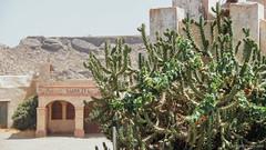 En algún lugar del desierto (SantiMB.Photos) Tags: 2blog 2tumblr 2ig desierto tabernas almería cactus andalucia españa esp
