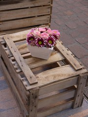 Pink Flowers on Box (Miozoto Images) Tags: outdoor flower wood box