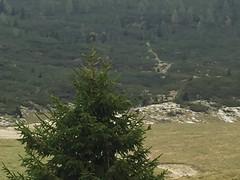 IMG_0713 (Andrea Omizzolo) Tags: montaallacerva 2018 dolomiti dolomites dolomiten alps alpi dolomitibellunesinationalpark parconazionaledolomitibellunesi pianieterni bivaccobrendol erera caseraerera brendol bramitodelcervo trekking amici