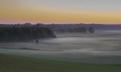 misty morning (renatecamin) Tags: herbst autumn fog landschaft landscape
