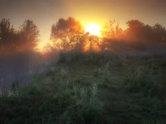 Foggy morning (tulbanov) Tags: fog sunlitgh sunrise dawn mist ukraine canon 550d sun landscape nature morning season