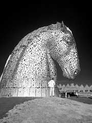 The Kelpies - Helix Park (MikeHawkwind) Tags: art canal falkirk forthandclydecanal helix infrared irphoto irphotography kelpies landscape scotland sculpture statue uk water