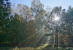 Wschód słońca / sunset (Adam Żabiński) Tags: wschódsłońca sunset krajobraz landscape promieniesłońca rays adamzphotography