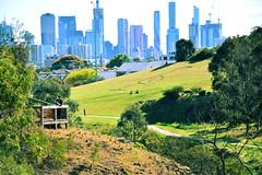 Yarra Bend Park, looking back towards Melbourne CBD. (Mark Tindale) Tags: melbourne cbd yarrabendpark clifton hill merricreek yarra parkland bushland recreational cycle track