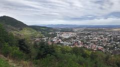 Thann vu depuis le Stauffen (mrieffly) Tags: alsace htrhin thann stauffen sortievtt vignoble ville forêtnoire plaine