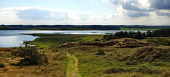 View to the lake (jens-kristiansoendergaard) Tags: nors lake outside fields cows garss water sky clouds