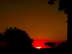 Pôr do Sol no Pilarzinho (Eduardo PA) Tags: curitiba paraná nokia pureview microsoft windows phone 950xl lumia wp pôr do sol no pilarzinho
