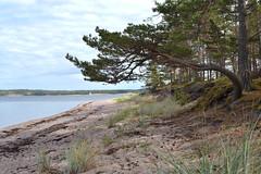 Sandön (timops) Tags: sandön archipelago sea finland balticsea
