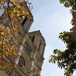 Cathédrale Notre-Dame de Paris thumbnail