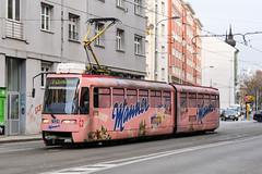 BTS_7124_201811 (Tram Photos) Tags: ckd tatra k2s bratislava dopravnýpodnikbratislava dpb strasenbahn tram tramway električková mhd električka vollwerbung ganzreklame