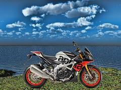 Aprilia-Tuono-V4-1100-Factory (driver Photographer) Tags: 摩托车,皮革,川崎,雅马哈,杜卡迪,本田,艾普瑞利亚,铃木, オートバイ、革、川崎、ヤマハ、ドゥカティ、ホンダ、アプリリア、スズキ、 aprilia cagiva honda kawasaki husqvarna ktm simson suzuki yamaha ducati daytona buell motoguzzi triumph bmw driver motorcycle leathers dainese motorrad