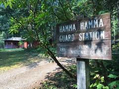 hamma-hammaの壁紙プレビュー