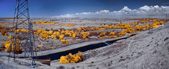 Panorama Vista Preserve, Bakersfield, California (Infrared Photography) (jc reyes) Tags: travels ir infrared infraredmaster digitalinfrared infraredimages infraredworld infraredphoto irfilter irphotography colorinfrared falsecolors invisiblelight creativeir creativeiramericas creativeireurope iginfrared photography infraredcamera infraredlandscape kolarivision jawdroppingshots epiccaptures igworld nikon nikonphotography nikkor bakersfield park panorama ​