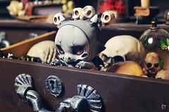 Dolltober Day 8 : Skull. (Chantepierre) Tags: bjd balljointeddoll balljointed doll dolltober2018 ladicius chantepierre aileendoll aileen plapico dragon ashes