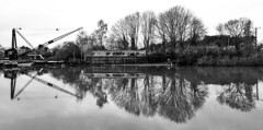 The Crane Will Eat Them All (WorcesterBarry) Tags: blackwhite bnw blackandwhite crane riversevern reflection river trees travel places photographers lovebw landscape lines monochrome humour outdoors oldage england adventure candid