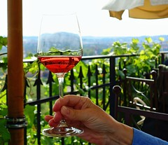 Glasses with wine (Yirka51) Tags: agriculture appetite bar bush drink entertainment farming flora garden glass grapes grapevine hand handrail leaves metal iron ironing nature plant rail railing rose vine vineyard wine parasol sleeve finger fingernail