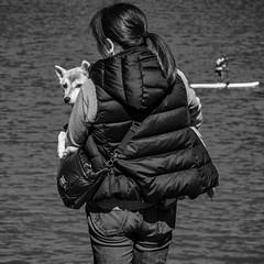 not interested (wallli77jp) Tags: sup standuppaddeling tamagawa sport outdoor water river race pentax k5 limited 多摩川 アウトドア レース スポーツ ペンタックス