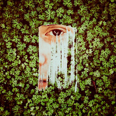 (ChasingTheSoul) Tags: grass green simple simplicity eyes texture photography photographerlife photograph photographer lifeofaphotographer light lighting fine art fineart conceptual