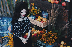 Autumn street IV (AzureFantoccini) Tags: bjd abjd balljointeddoll doll diorama dollhouse dollroom miniature autumn street outdoor apples harvest zaoll dollmore luv flowers shop