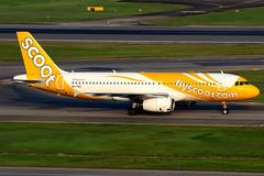 Scoot | Airbus A320-200 | 9V-TRC | Singapore Changi (Dennis HKG) Tags: aircraft airplane airport plane planespotting canon 7d 100400 singapore changi wsss sin scoot tgw tr airbus a320 airbusa320 9vtrc