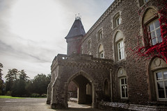 National Trust Dinefwr (Coed Celyn Photography) Tags: national trust llandeilo carmarthenshire wales west south cymru dinefwr landscape house manor red leaves sky background green grass fields grounds climbing ivy towers mansion