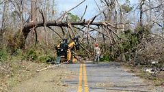 Florida National Guard (The National Guard) Tags: fl flng florida hurricane michael ng nationalguard national guard guardsman guardsmen soldier soldiers airmen airman us army air force united states america usa military troops 2018 relief efforts emergency response responding trees debris branches chainsaw redhorse